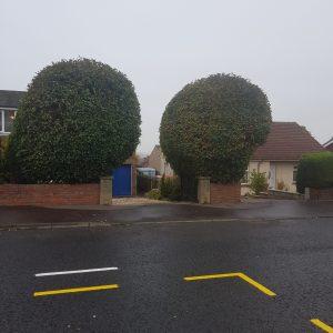 garden services Perthshire